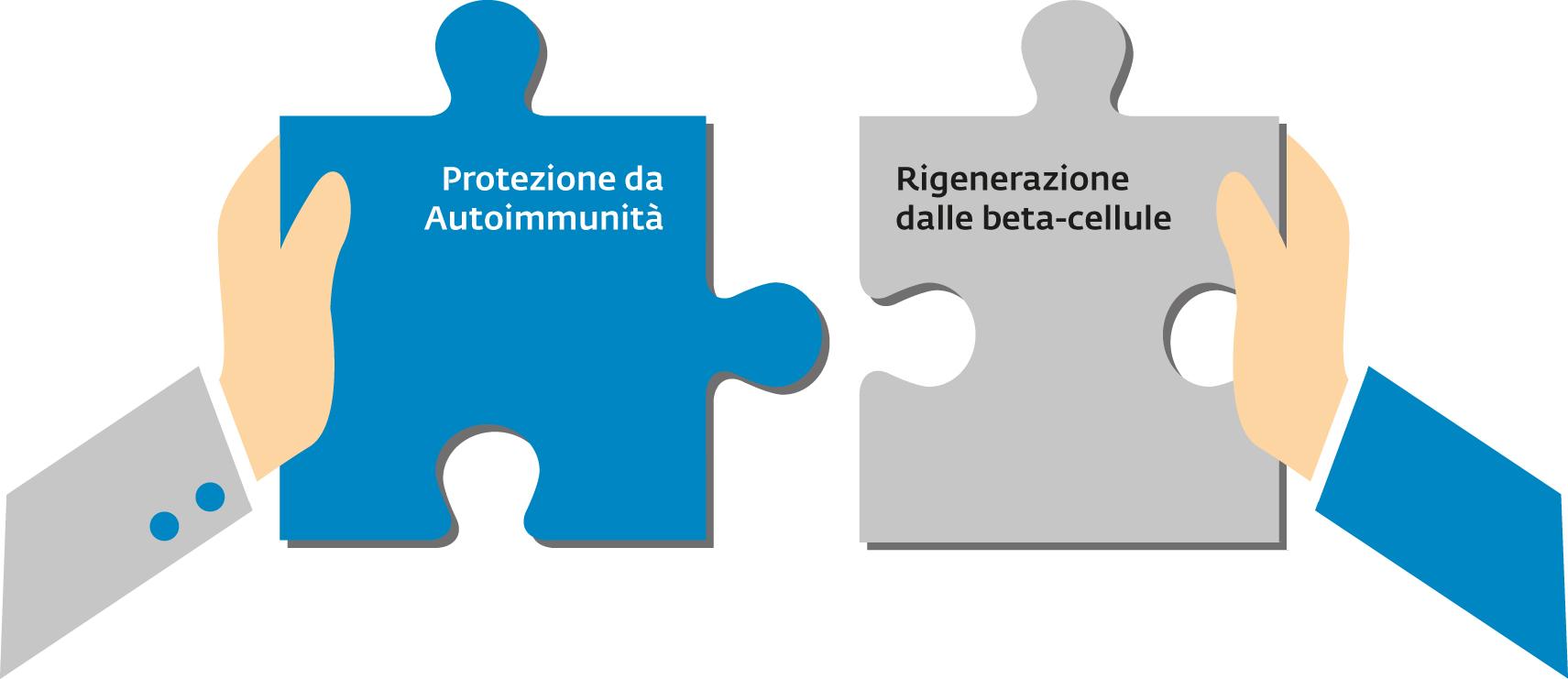 Preservazione di massa e funzione  beta-cellulare nel diabete tipo 1